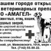 Амагел / Оптовая фирма /